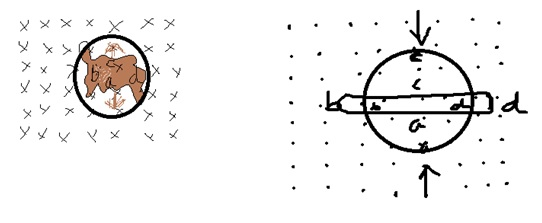 Use Lenz's law to determine the direction of induced
