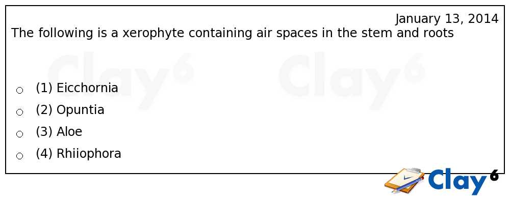 http://clay6.com/qa/18618/the-following-is-a-xerophyte-containing-air-spaces-in-the-stem-and-roots