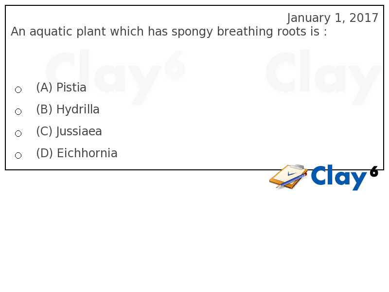 http://clay6.com/qa/19376/an-aquatic-plant-which-has-spongy-breathing-roots-is-br-p-p-p-p-